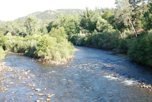 Camp River