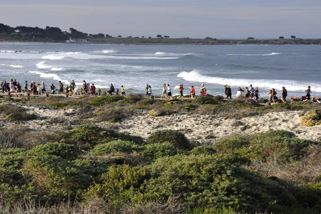 Picture from : http://www.bigsurhalfmarathon.org/