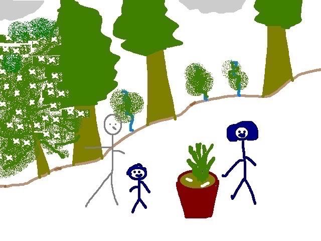 do-nothing-garden