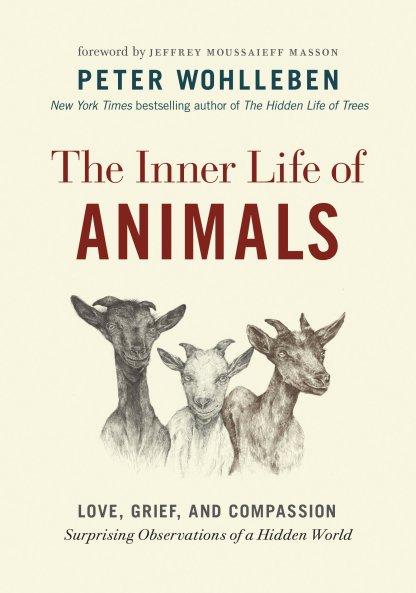 inner_animal