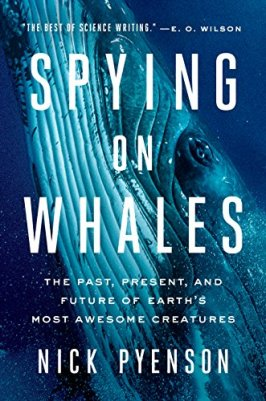 spying_whale
