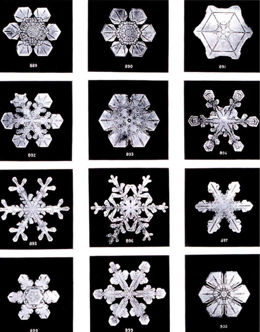 Wilson Bentley's Snowflake Images