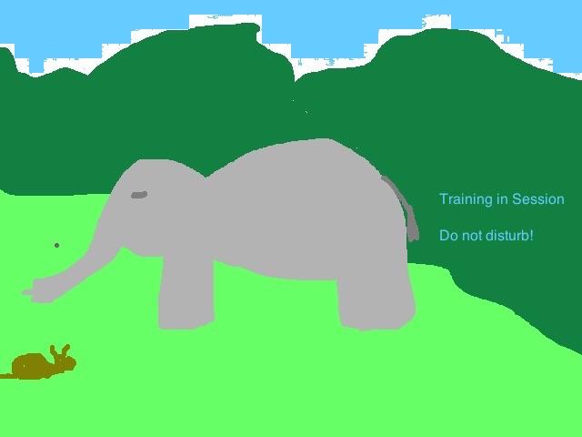 elephant_snail